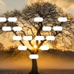 Un arbre généalogique Excel gratuit à télécharger
